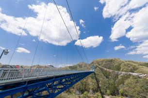 竜神大吊橋と鯉のぼりの写真素材 [FYI00338367]