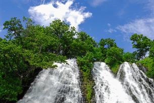 オシンコシンの滝の写真素材 [FYI00338684]