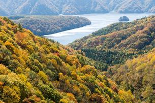 黄葉の秋元湖の写真素材 [FYI00338711]