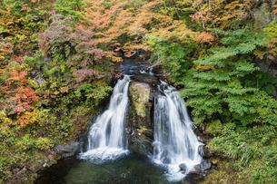 秋色の明神滝の写真素材 [FYI00338739]