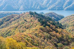 三湖台パラダイスの紅葉の写真素材 [FYI00338800]