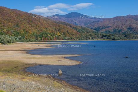 秋晴れの桧原湖金山浜の素材 [FYI00338821]