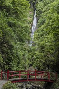 洒水の滝の写真素材 [FYI00338880]