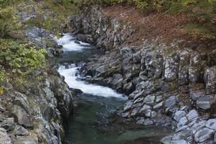 中津川渓谷の岩盤の写真素材 [FYI00338885]