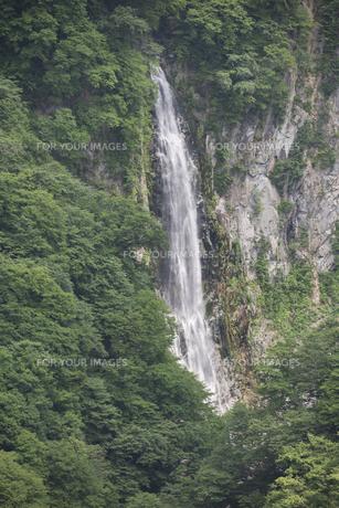 初夏の潤満滝の素材 [FYI00338891]