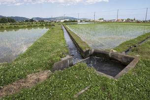 農業用水路の写真素材 [FYI00338893]