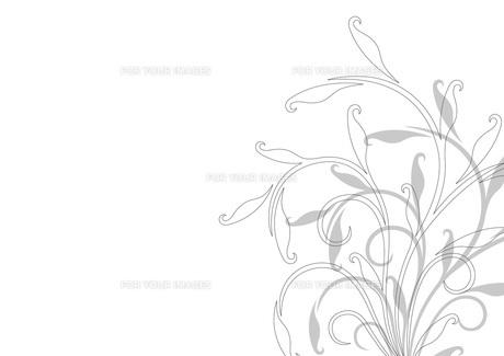 グラフィックプランツの素材 [FYI00338980]