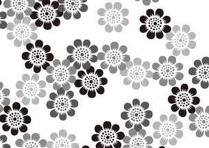 グラフィックパターンの素材 [FYI00359941]
