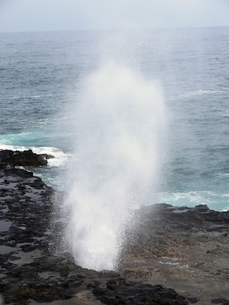 カウアイ島の潮吹き岩の写真素材 [FYI00361197]