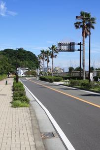 江の島の道路の写真素材 [FYI00361199]