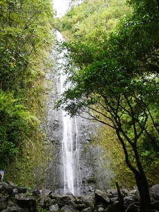 マノア滝の写真素材 [FYI00361207]