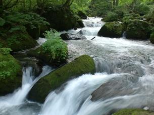 奥入瀬渓流の写真素材 [FYI00361218]