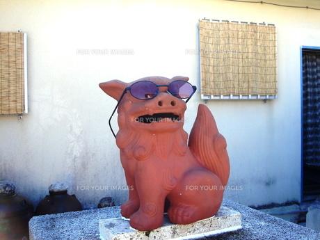 竹富島のシーサーの写真素材 [FYI00361236]