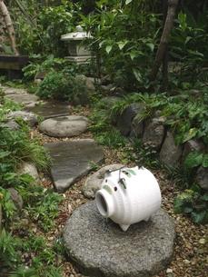 蚊取り線香と庭の写真素材 [FYI00361317]