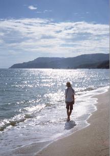 散歩の写真素材 [FYI00361457]