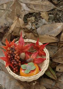 秋の写真素材 [FYI00361496]