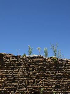 土壁の写真素材 [FYI00361498]