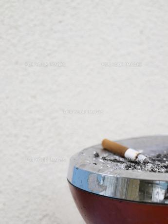 タバコの写真素材 [FYI00361510]