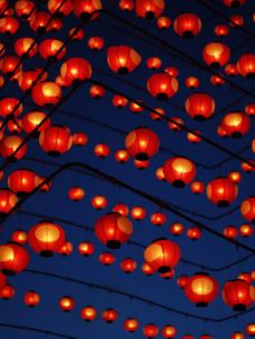 ちょうちん祭りの写真素材 [FYI00361513]