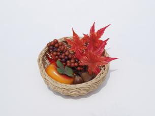 秋の写真素材 [FYI00361526]