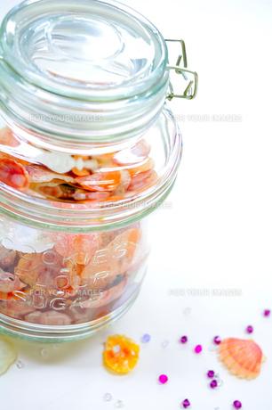 貝殻のガラス瓶の写真素材 [FYI00361601]