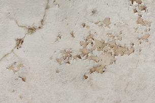 壁のしみの写真素材 [FYI00361739]