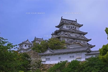 姫路城の写真素材 [FYI00361764]