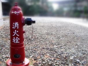 消火栓の写真素材 [FYI00361890]