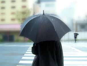 雨の日の写真素材 [FYI00361903]