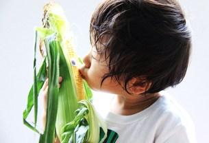 食育(トウモロコシとキスする男の子)の写真素材 [FYI00362025]