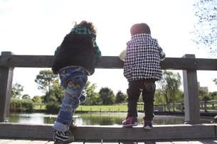 池を眺める兄弟の後ろ姿の写真素材 [FYI00362048]