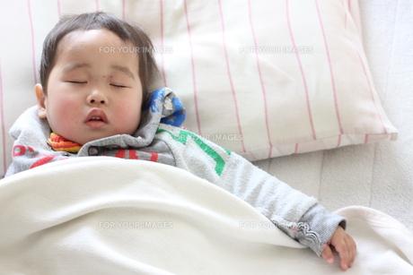 お昼寝をする男の子の写真素材 [FYI00362097]