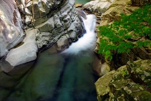 面河渓谷の写真素材 [FYI00362256]