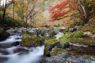 秋の小田深山の写真素材 [FYI00362257]