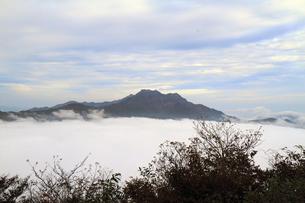 石鎚と雲海の写真素材 [FYI00362293]