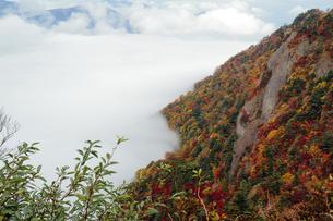 紅葉と雲海の写真素材 [FYI00362302]
