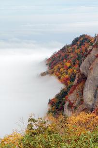 紅葉と雲海の写真素材 [FYI00362304]
