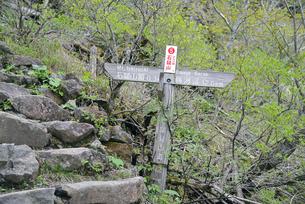 石鎚登山の標識の写真素材 [FYI00362987]