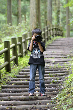 ちびっこカメラマンの写真素材 [FYI00363110]
