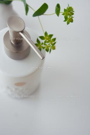 ソープディスペンサーと植物の写真素材 [FYI00364305]