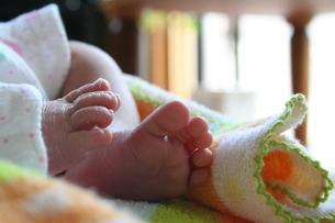 赤ちゃんの足の写真素材 [FYI00364307]