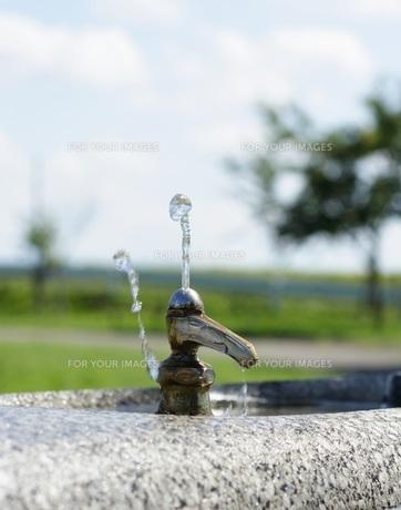 水飲み場の写真素材 [FYI00364340]