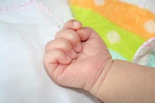 赤ちゃんの手の写真素材 [FYI00364342]