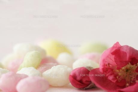 桃の花と雛あられの素材 [FYI00364404]