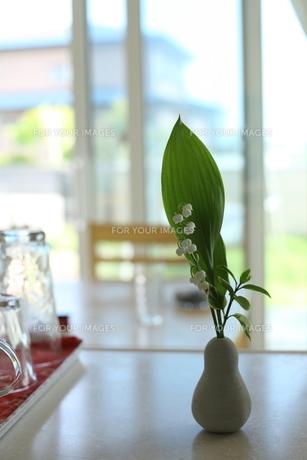 キッチンに飾った花の素材 [FYI00364438]