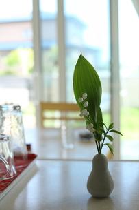 キッチンに飾った花の写真素材 [FYI00364438]