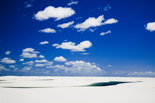 ブラジル東部の消える湖の素材 [FYI00364480]
