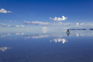 ミラーレイクのウユニ塩湖の素材 [FYI00364652]