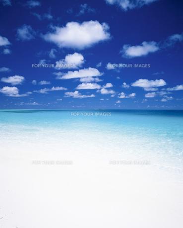 インド洋の美しい海の素材 [FYI00364831]