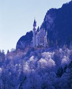 厳冬期のノイシュバンシュタイン城の写真素材 [FYI00364892]
